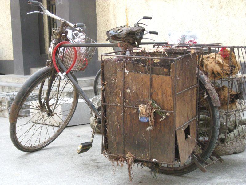 Chicken Man's Bike_April 2009