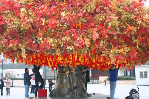 Wishing Tree_Longhua Temple_Shanghai