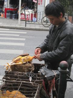 Chicken Man_2010_5